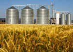 Grain futures - weekly outlook: April 20 - 24