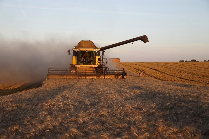 Indian wheat supplies tight, may boost low global prices