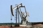 Opep: les pays arabes pétroliers du Golfe vont résister à une baisse de la production